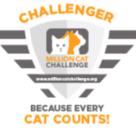 Million Cat Challenger