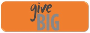 updated GIVEBIG Donate button