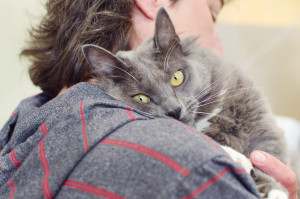 Become a cat rescue volunteer at SAFe!