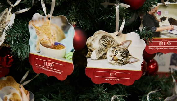 Now at the Adoption Center: Pawliday Giving Tree!