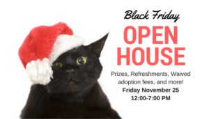 Black Friday Open House