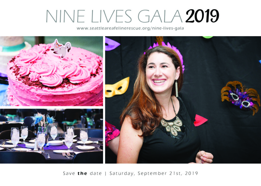 Nine Lives Gala 2019 @ Shoreline Community College
