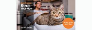 Strut Your Mutt to Keep Kitties SAFe!