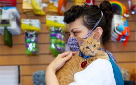 SAFe Rescue team member holds a kitten while wearing a mask.